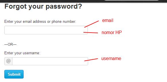 lupa password twitter